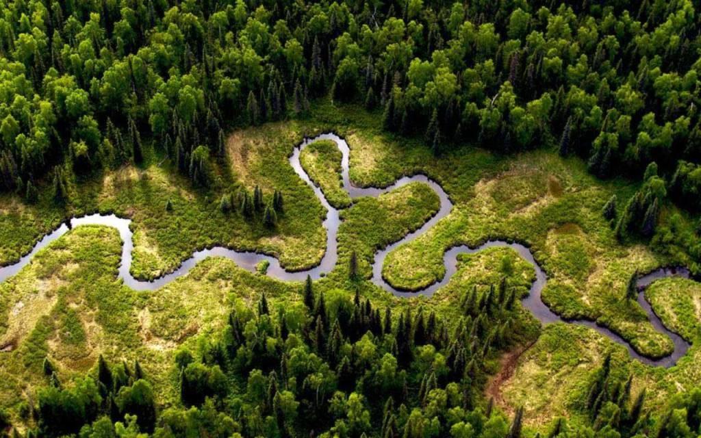 Амазонка – самая длинная на свете река