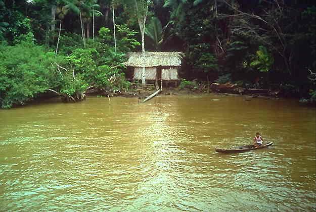 Хижина на Амазонке