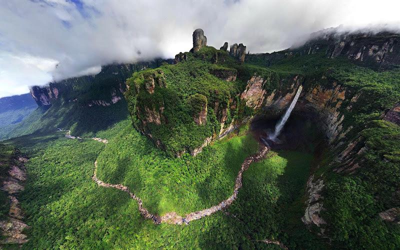 Анхель в тропическом лесу