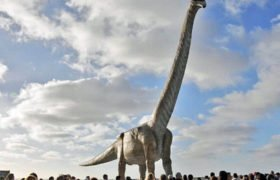 Патаготитан майорум - самый большой динозавр
